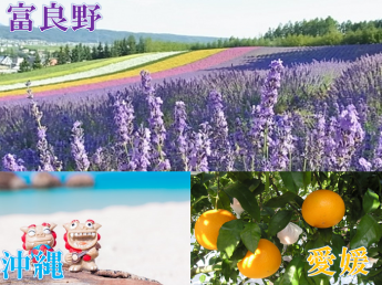 日本一周農業の旅!《北海道~愛媛~沖縄》期間限定農業をしながら日本を巡りませんか?