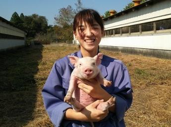 """""""安全でおいしい本物の豚""""を生産するため、こだわりを持って事業に取り組んでいます。"""