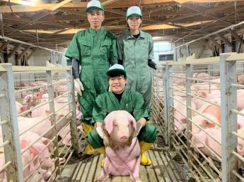 北の大地のアットホームな農場で日本一の豚をつくろう!豚の繁殖~肥育まで幅広い業務に取り組んでくれる新卒生を大募集!