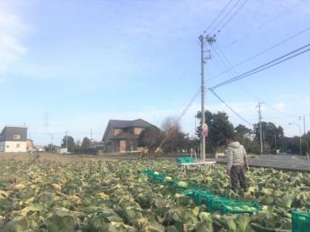 \独立希望の方歓迎/静岡県浜松市で
