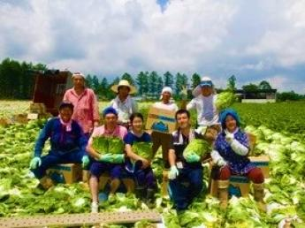 和気あいあいとした雰囲気の中で短期農業にチャレンジしませんか?【個室寮あり+3食・おやつ付き♪】