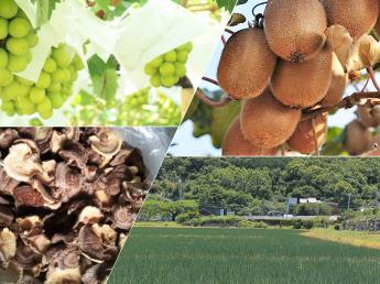 農業生産法人 株式会社安部