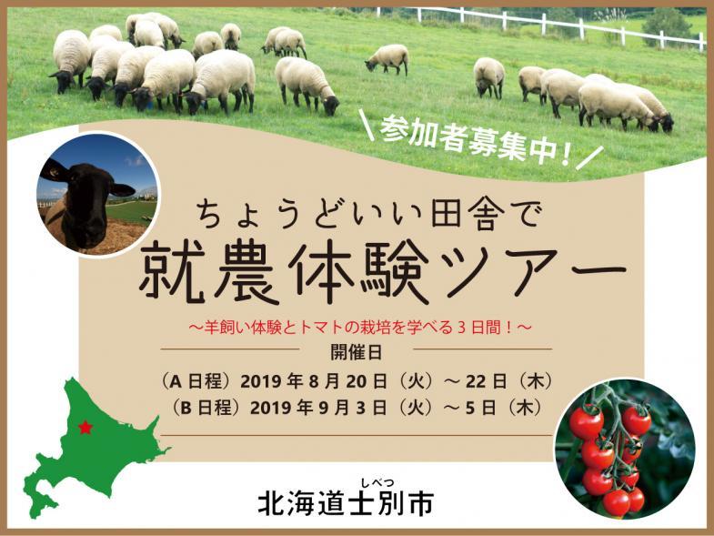 ちょうどいい田舎で就農体験ツアー 参加者募集! 【2泊3日で羊の飼養とトマトの収穫・選果体験】