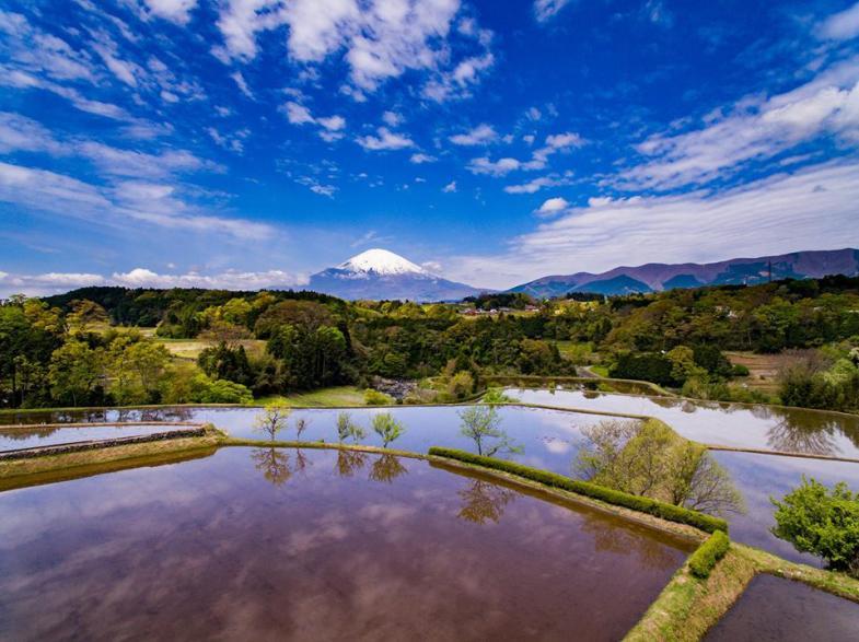 ふじのくに静岡県で農業をはじめる方を応援します!!