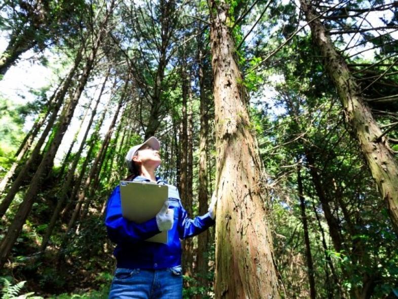"""林業が盛んな山口県での""""林業×暮らし""""を全三回の講座でじっくり学びませんか?"""