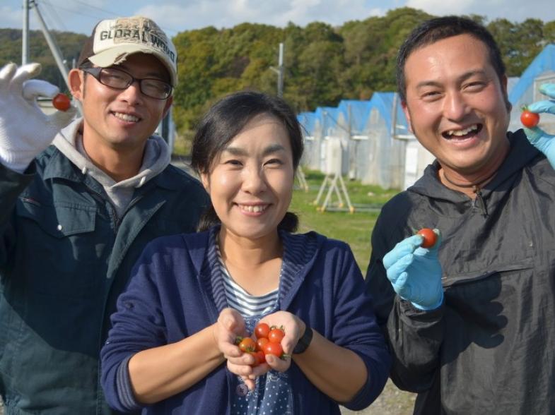 北海道新ひだか町で、ミニトマト農家もしくは花き農家を目指しませんか? 独立への第一歩!新規就農相談会を札幌で開催いたします!