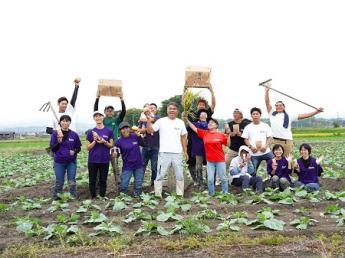 「泉州たまねぎ」「泉州キャベツ」をつくる農業機械オペレーター募集! 伝統と素晴らしい味を守るため、あなたの力を貸してください!