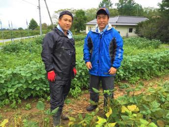 南アルプスが一望できる場所で農業を通して従業員の笑顔をつくる仕事にチャレンジしてみませんか?【未経験歓迎】