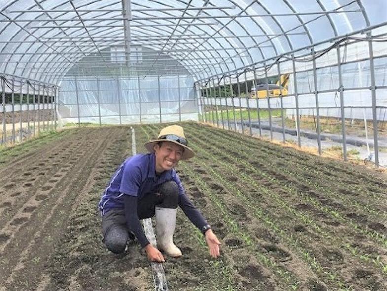 ◆限定2名募集◆ 就農におけるそれぞれのステージで手厚いサポートを受けられる北広島町で、新規就農研修生としてあなたの農業を始めてみませんか?