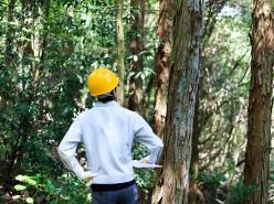 【ランチ付き♪】首都圏林業体験会 開催!
