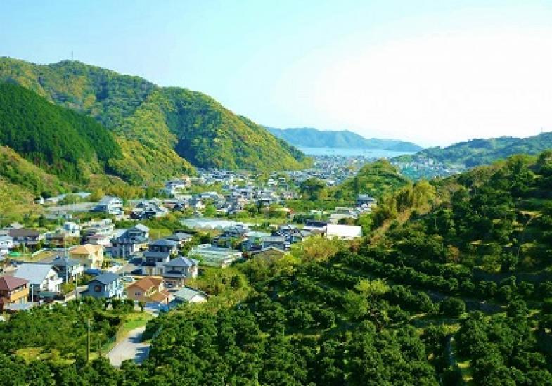 ≪研修生募集!≫~奈良時代から続く歴史ある産地~ 伝統ある柑橘産地で、おいしい柑橘を作りませんか?