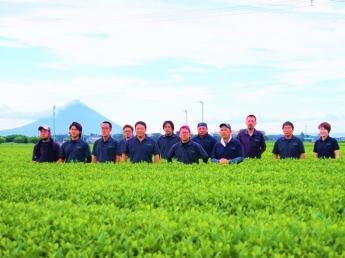 お茶づくりを通して、新しい未来を共に切り拓いていきませんか?◎製茶工場&茶園管理スタッフ募集