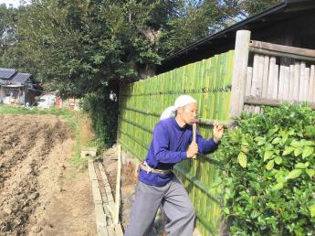 【農業&造園業、未経験者歓迎】身近な緑を作る仕事です!口コミや紹介で成長した地域のお客様に支えられている会社です