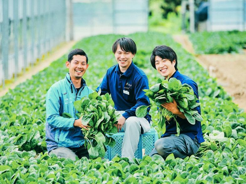 就農を本気で考えるあなたを全力サポート。 緑と清流と温泉の町、佐賀市富士町でホウレンソウ農家を目指しませんか?