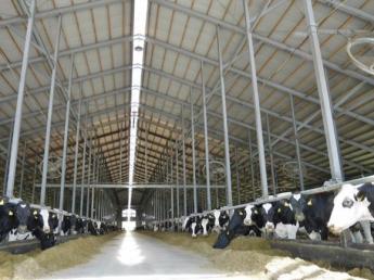 良質な牛乳に誇りを持って生産しています!!社宅完備《無料♪》なので遠方の方もすぐに牧場生活がスタートできます!!【未経験者歓迎】