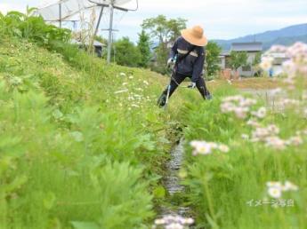 \6月20日頃~7月末までの約1ヶ月限定/体を動かして汗を流しませんか?地域の景観を守る、草刈りバイトの募集です