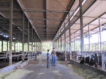【月8日休・実働8時間以内・未経験歓迎】持続可能な新しい酪農モデルの構築を目指すホールディングス会社のグループ農場での募集です! IoT技術を活用した新規牧場もOPEN予定! 新しいことに挑戦し続ける私たちと一緒に働きませんか?