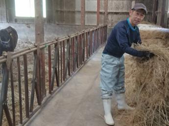 大分県西部の玖珠町・九重町で肉用牛ヘルパーを始めませんか? ◎未経験の方も手厚くバックアップ!! ◎肉牛農家を目指す第一歩!!