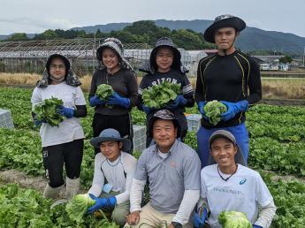 香川県観音寺市にて代々続く農園で、安心安全な野菜づくり 将来、当農園の中核を担ってくれる正社員募集!
