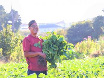 藤沢市で年間60品目以上の野菜づくりに取り組んでいます 【事業拡大に向け、新メンバー募集!】 都会の強みを最大限に生かし、たくさんの仲間と楽しみながら農業にチャレンジしませんか?