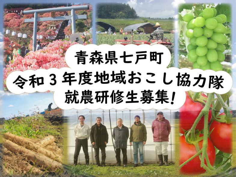 地域おこし協力隊として活動し、謝礼を得ながら独立の夢に向かって頑張ってみませんか? 様々な農家さんのもとで、栽培技術や農業経営について学べます