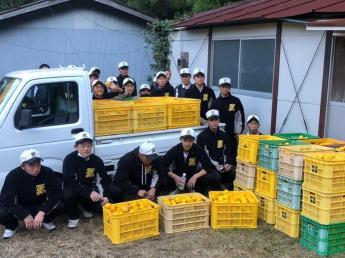 【生産職・加工製造職・営業職・EC運営担当職・営業事務職同時募集!】 世界が認める徳島の『木頭ゆず』を生産する会社で地域を盛り上げていくお手伝いをしませんか?