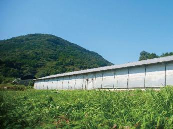 有限会社みのり農場【農作業スタッフ】