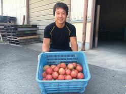 トマト就農相談会を開催します (オンライン開催)