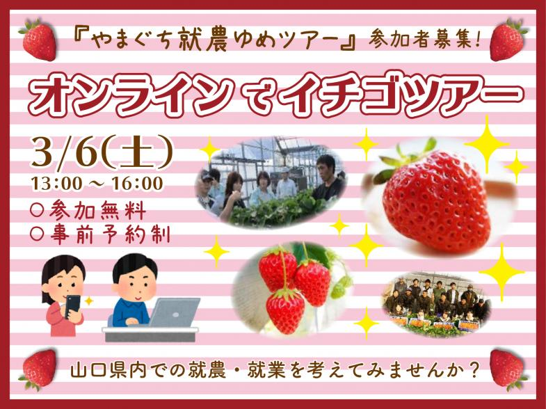 """オンラインで〝イチゴ""""ツアーを実施します!  イチゴ農家になりたい! その夢に向けて一歩踏み出してみませんか?"""