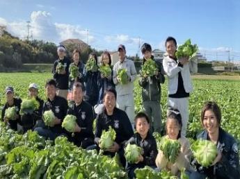 着実に事業拡大中。 若手が活躍する、淡路島の新進気鋭のレタス農家で一緒に働きませんか? 独立希望者も大歓迎!