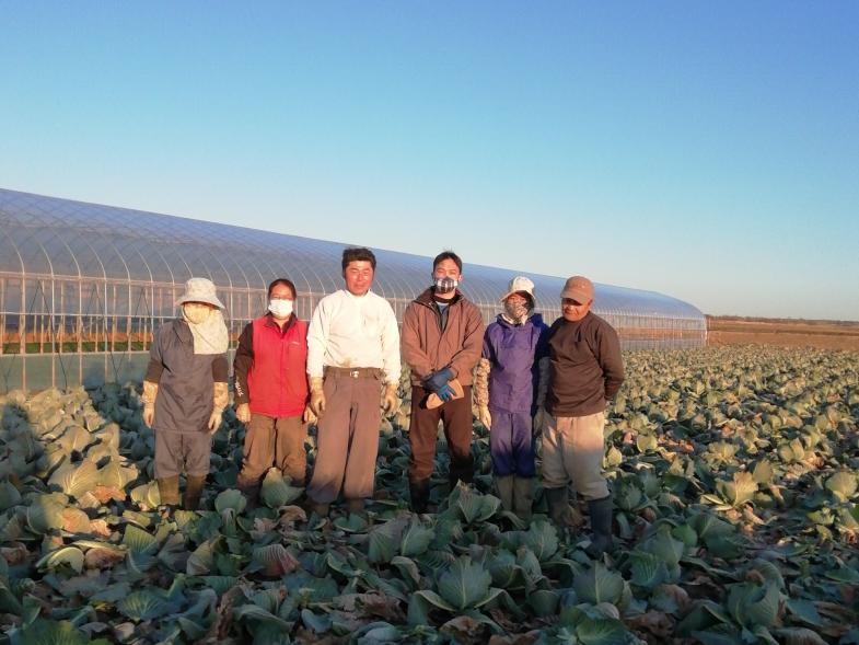 千葉県柏市でお客様の声を大切に、攻めの農業経営をおこなっています。 未経験の方も大歓迎!一緒にお客様に喜んでいただける農業生産に取り組みませんか?
