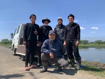 食味の良いれんこんづくり一筋37年。 福田農園で一緒に働きませんか? れんこんづくりを1から学んでみたいという方、お待ちしています!