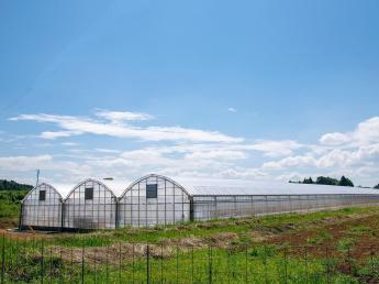 \あなたのつくる、九州の「美味しい!」を日本全国、そして世界へ/ 「月曜から夜ふかし」はじめメディア掲載多数。各方面から注目される農場であなたの一歩をはじめませんか?