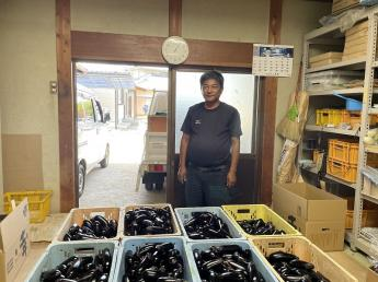\2022新卒生募集!未経験から独立を目指せるサポート体制あり!常に成長を実感できる環境です!/ 香川県でナスの生産量一位を誇る農場で、正社員から独立に向けて経験を積みませんか?