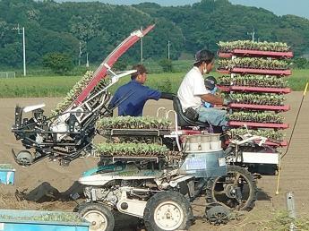 農業が抱える課題に立ち向かい、日本の農業界のモデルを一緒に創っていきましょう!【週休2日】
