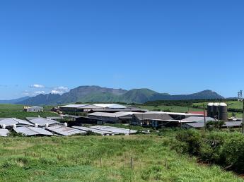 未経験でも農場長を目指せるゥッシー!可愛い牛と豊かな自然に囲まれて美味しい生乳づくりをしませんか!?