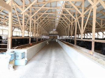 \唐津市で育てた佐賀牛を世界へ/ 未経験者も歓迎♪ブランド牛を日本全国、世界へ!