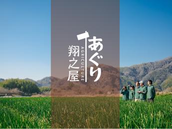\未経験者大歓迎!/ 京都の伝統野菜『九条ねぎ』を生産! 個人個人が夢を実現できる会社を目指しています!