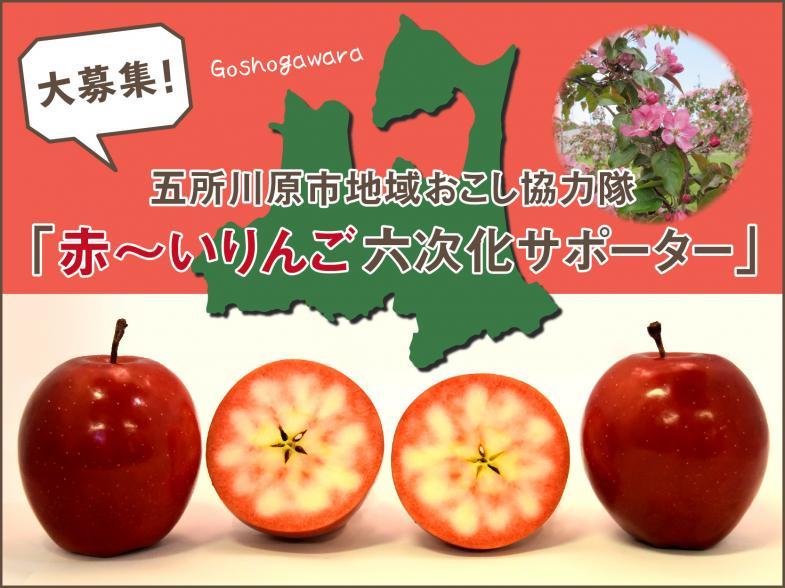赤~いりんごが未来を拓く! 六次化就農で地域を盛り上げよう ~地域の魅力度向上大作戦~