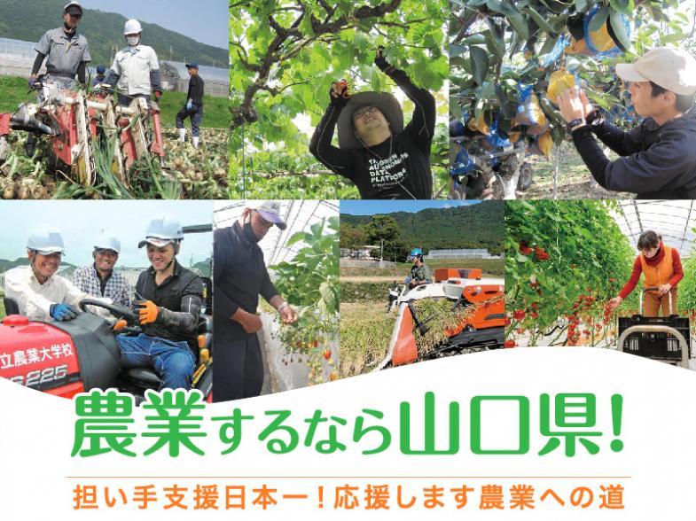 農業するなら山口県! 山口県で農業始めてみませんか?
