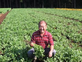 正社員、独立を目指す方、ともに歓迎! 農業を次世代に繋げていくために、一緒に頑張ってみませんか? ☆未経験の方大歓迎です!