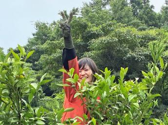 フジカワ独自のこだわり農法でお客様に喜んでもらえるような安心安全の果実をつくっています!