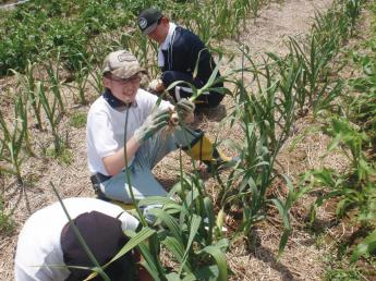 \仙台・NPOで障害者の農作業をサポート/ 収穫野菜は自社店舗で販売のため、消費者の声も届くやりがいのある環境です! ◎社会福祉に貢献できるお仕事です♪