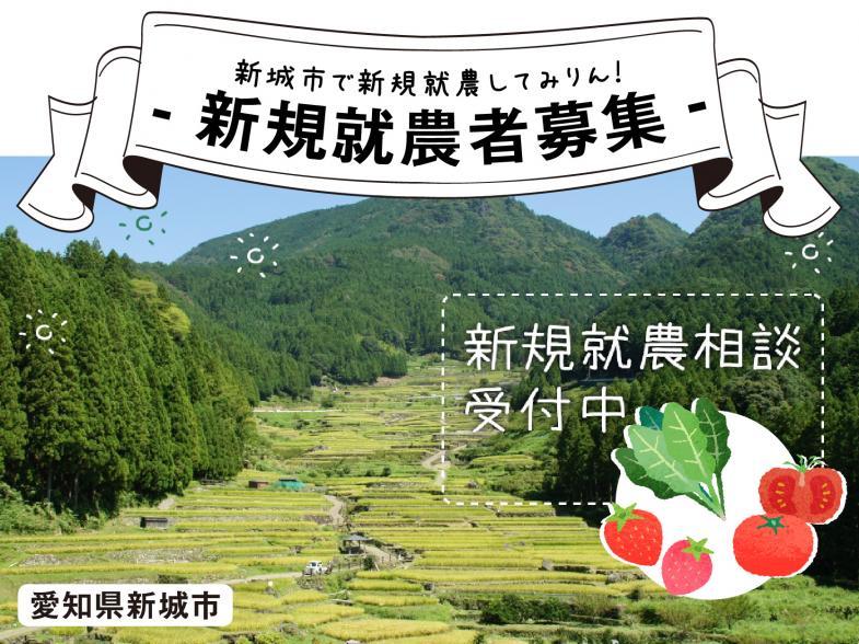 新城市で新規就農してみりん! 【愛知県新城市新規就農者募集】