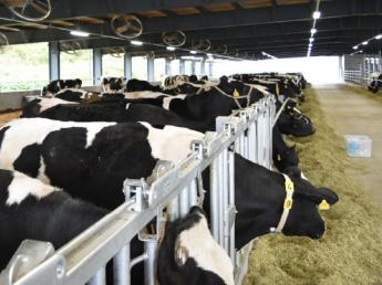 牛好き・動物好き集まれ!未経験でも挑戦したい気持ちがあれば大歓迎! ◎東証一部上場企業のグループ会社 ◎未経験の方歓迎
