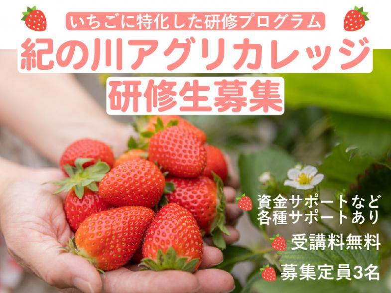 「農業で独立したい!」 その夢、和歌山県紀の川市で叶えませんか