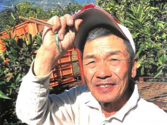 \日本一の西宇和みかんが食べ放題/運搬2名募集中! 体力に自信がある・みかんが好き・農業が好き・海や魚が好き・・・etc 一緒に楽しくやりましょう!家の目の前の海では釣りもできます!