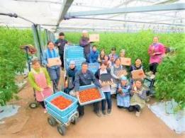 美斉津(みさいつ)農園