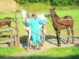 <span>株式会社越川ファーム</span>千葉県 有機野菜