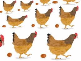 <span>有限会社近藤受委託農産</span>福岡県 露地野菜、稲作